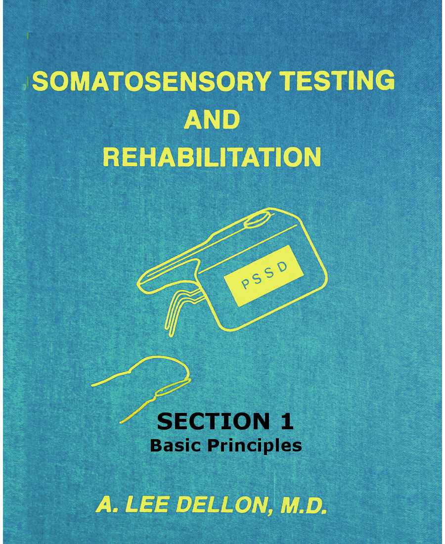 somatosensory testing section1